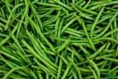 haricot vert à vendre