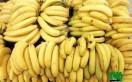 banane douce bio à vendre