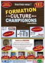 Formation en culture du champignons