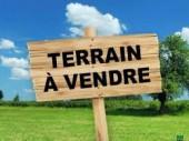 terre agricole à vendre