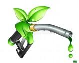 bio carburant à vendre